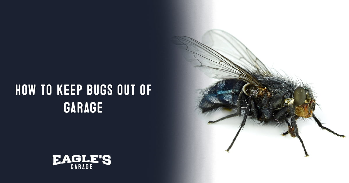 how to keep bugs out of garage